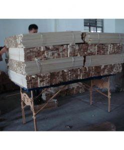 تخت ماساژ پرتابل WT321A 3