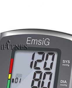 فشار سنج دیجیتال امسیگ emsig bw62