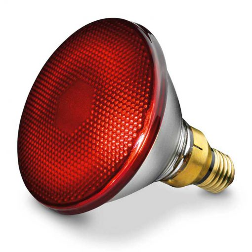 IL21beurer2 لامپ مادون قرمز بیوررIL21